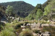 Riu Estena 4799 (*)