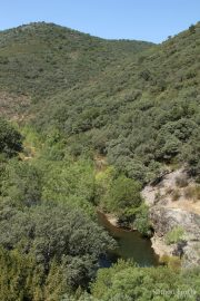 Riu Estena 4801 (*)