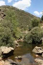 Riu Estena 4813 (*)