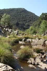 Riu Estena 4798 (*)