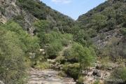 Riu Estena 4811 (*)