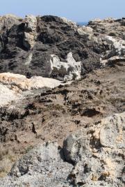 Roca Cavallera 0477 (*)