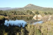Bassa de la Rajoleria (Estanys de Gutina) 3145 (*)
