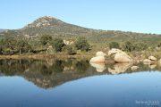 Bassa de la Rajoleria (Estanys de Gutina) 3146 (*)