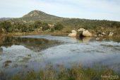 Bassa de la Rajoleria (Estanys de Gutina) 9150 (*)