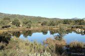 Bassa de la Rajoleria (Estanys de Gutina) 3141 (*)