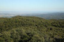 Des del Puig d´Arques mirant al Baix Ter 0601 (*)